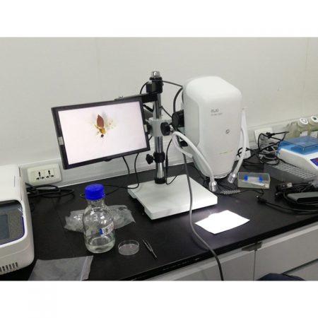 Digital Operating Microscope 3