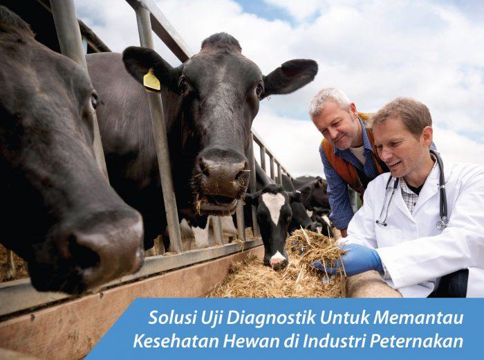 Solusi Uji Diagnostik Untuk Memantau Kesehatan Hewan di Industri Peternakan